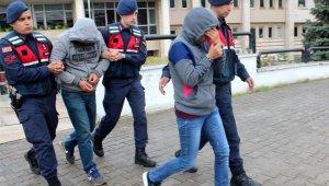 Akbük'te ağaçları kesen şahıslar tutuklandı