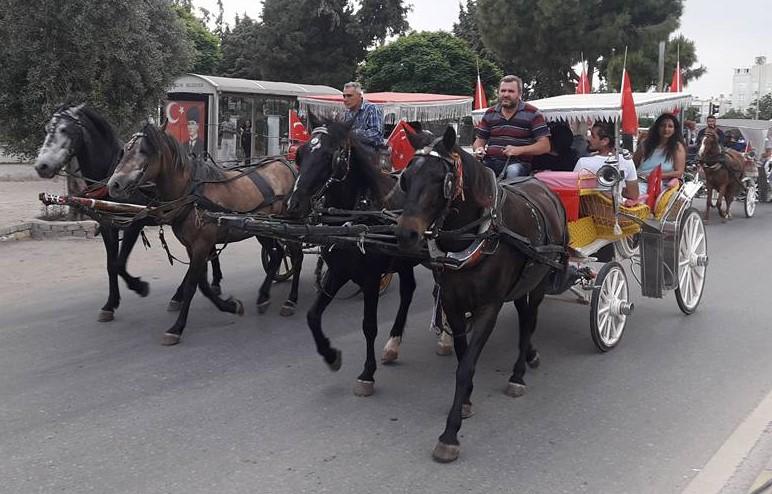 Didim'de Vegan Festivali fiyaskosu . Türkiye Vegan Derneği Festivale katılmıyor