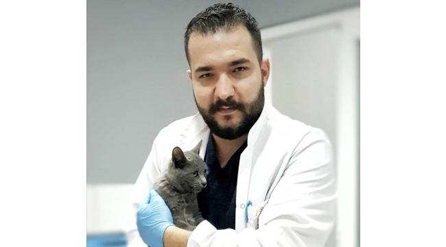 Aydın Veteriner Hekimleri Odasından 'mobil kısırlaştırma' uyarısı