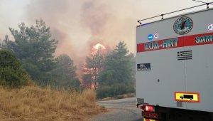 Sisam Adası yanıyor
