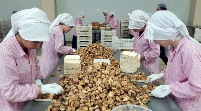 Aydın inciri, kayısı ve baklavayla beraber 2 milyar euroluk katma değer oluşturacak