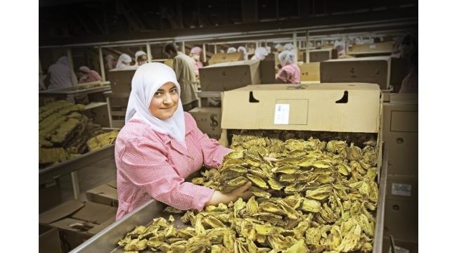 Kuru meyve sezonu açıldı, ihracatı üç haneli rakamlara ulaştı