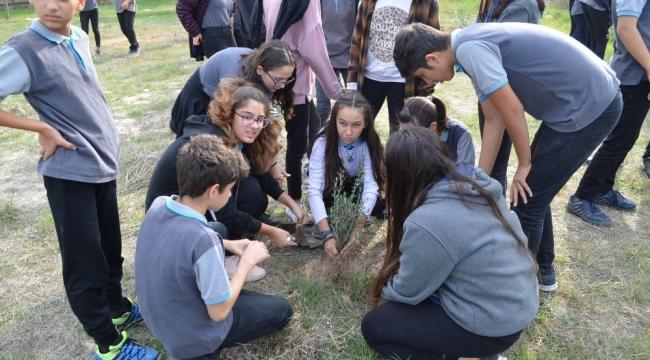 Didim'de liseli öğrenciler okullarına zeytin fidanı dikti