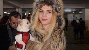 Aydın'da köpek ırkları yarışması başladı