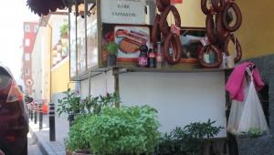 Aydınlı tostçu iş yerinde kendi bahçesini oluşturdu